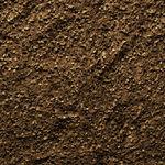 Dirt15