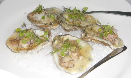 Jaxoysters