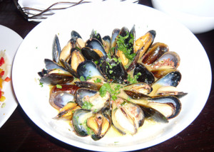 S32mussels_2